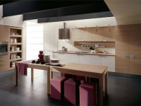 14modern-kitchen-ca