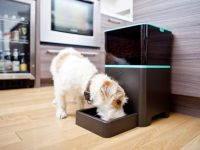automatic-pet-feeder