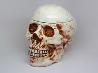 brown-and-white-ceramic-skull-cookie-jar