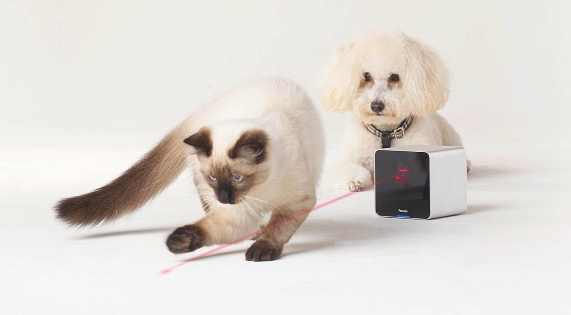 interactive-pet-camera-with-laser