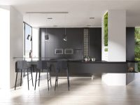 light-black-kitchen-light-filled-black-benches-hanging-plants