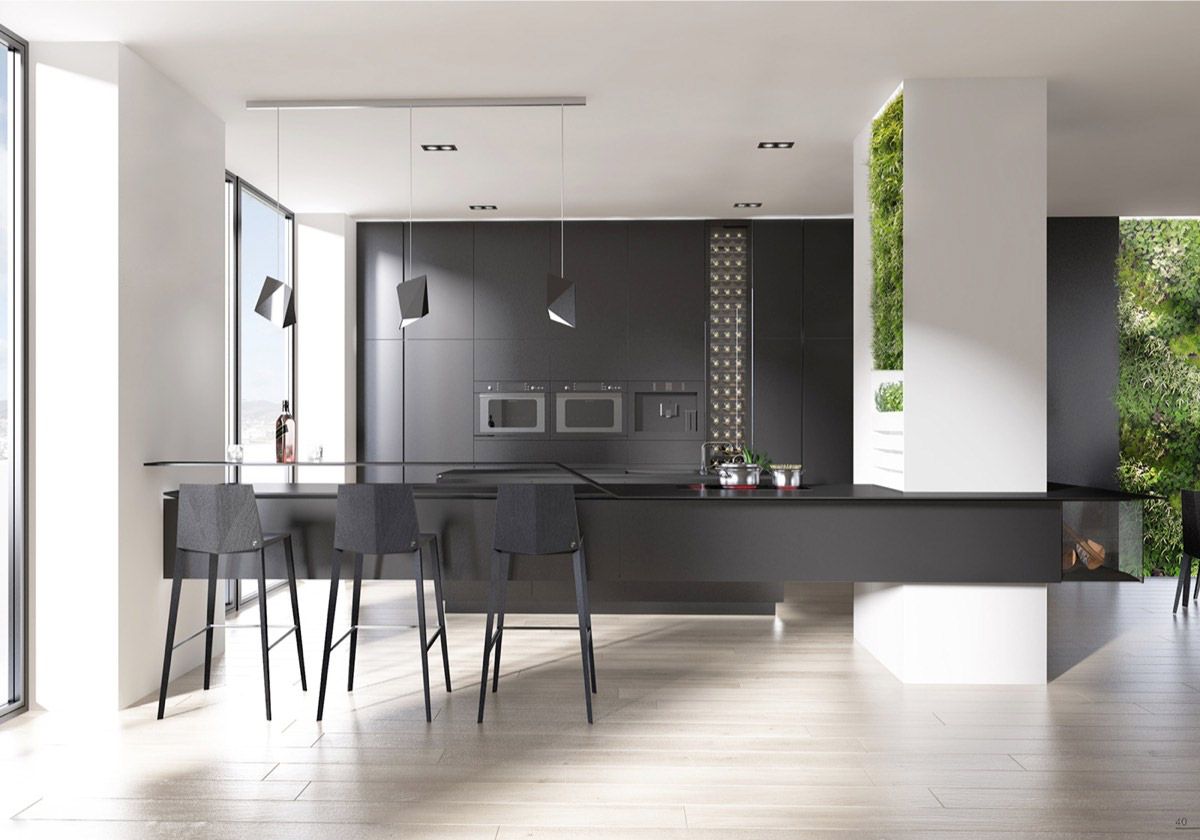 light-black-kitchen-light-filled-black-benches-hanging-plants