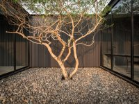pebble-courtyard-design