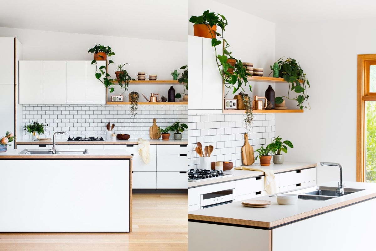 pot-plant-kitchen-wooden-open-shelving