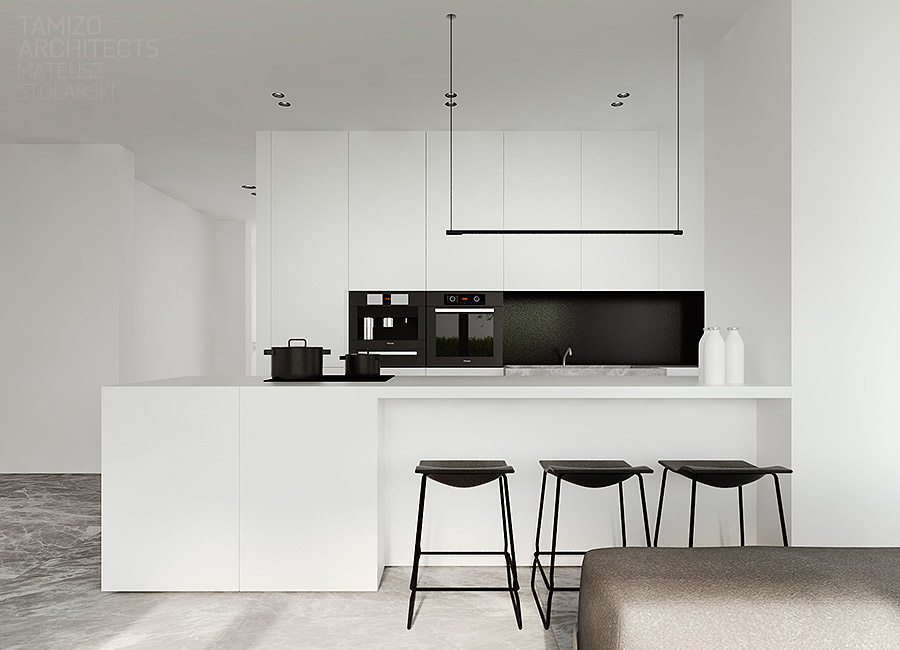 ultra-minimalist-black-and-white-kitchen-inspiration
