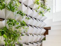 indoor-wall-planters