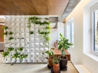 interior-green-wall-design