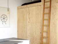studio-with-lofted-bed