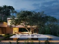 pool-patio-with-tree