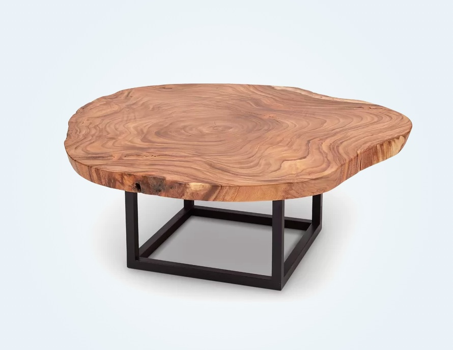 Tree-Slice-Coffee-Table-Live-Edge-Round-Square-Black-Base