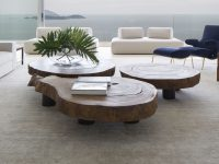 tree-trunk-coffee-tables