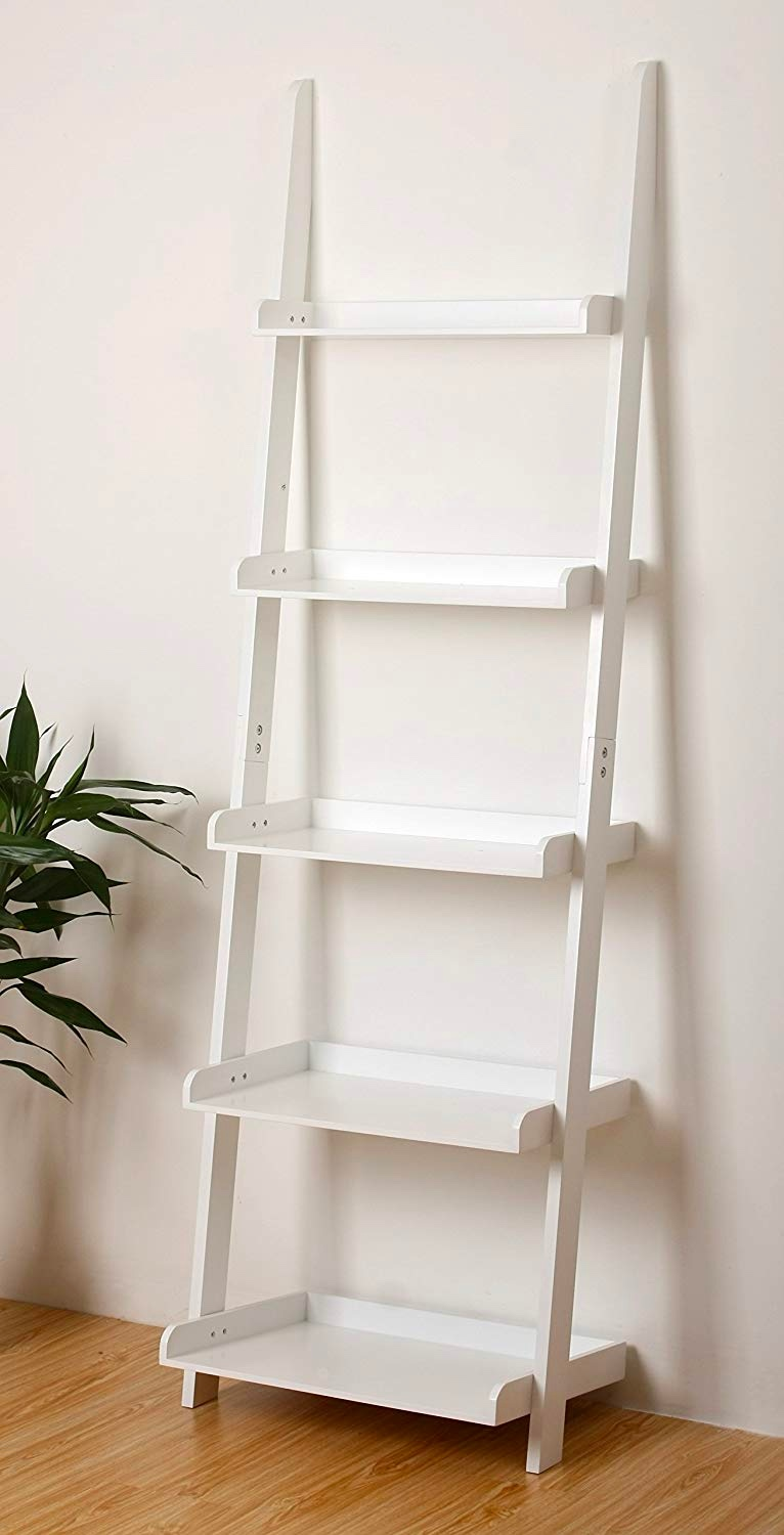 white-ladder-shelf-with-edges-for-minimalist-modern-or-scandinavian-interior-themes