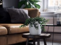 white-planter