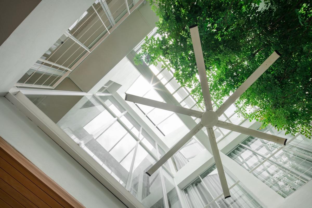 white-ceiling-fan