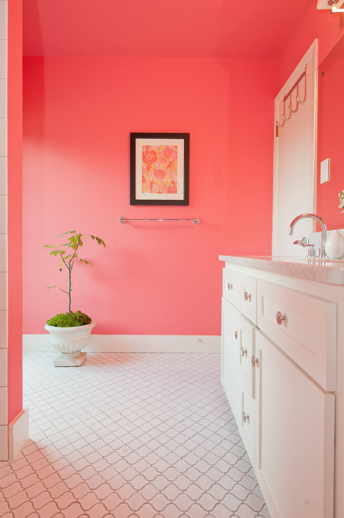 Coral Pink Bathroom Awesome Decors