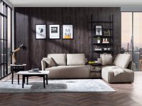 low-profile-contemporary-sectional-sleeper-sofa