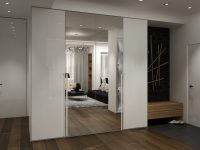 mirrored-closet-door