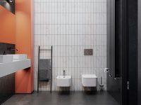 wall-mounted-bidet-and-toilet-set