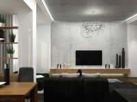 wood-and-concrete-apartment