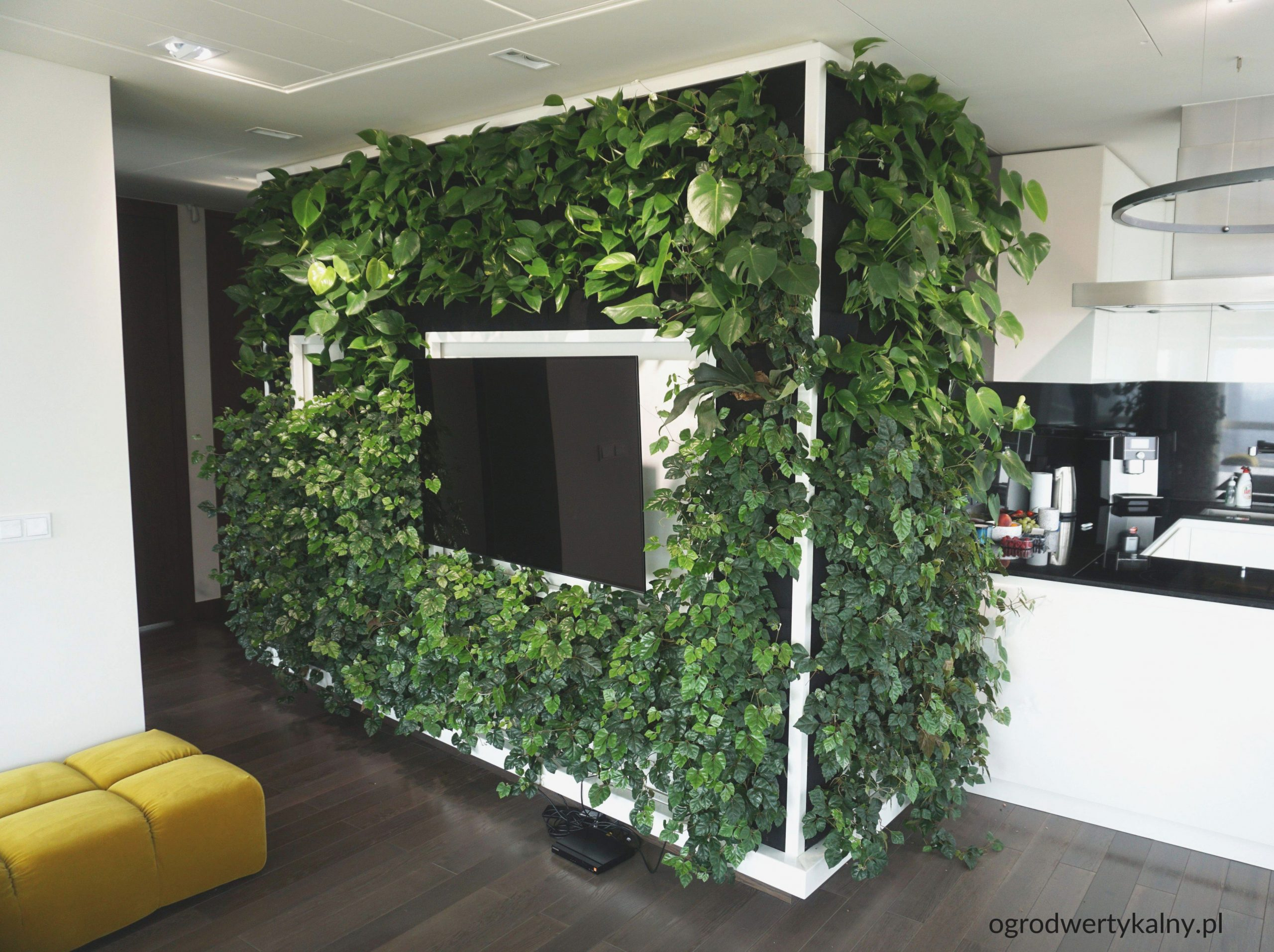 Living Room Green Wall Ideas Home Design Photo Interior And throughout 13+ Unique Ideas For Purple And Green Living Room Decor