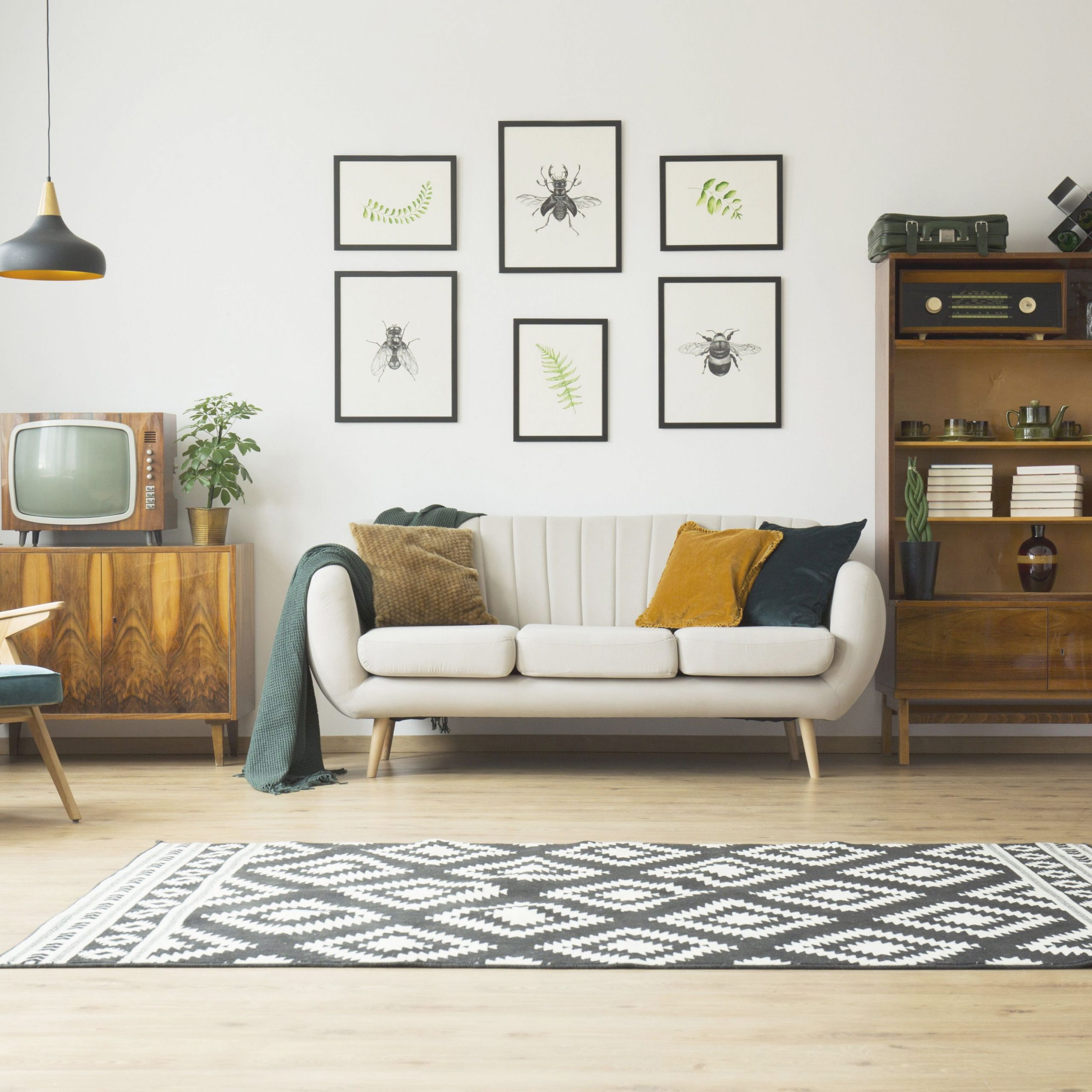 The Beginner'S Guide To Decorating Living Rooms for 15 Unique Gallery For Decorative Items For Living Room