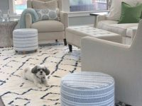 12 Best Navy And White Area Rugs: Under $200 with regard to Blue And White Living Room