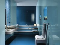 Blue-white-ceramic-bathroom-tiles