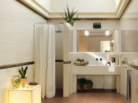 Sophisticated-bathroom-scheme