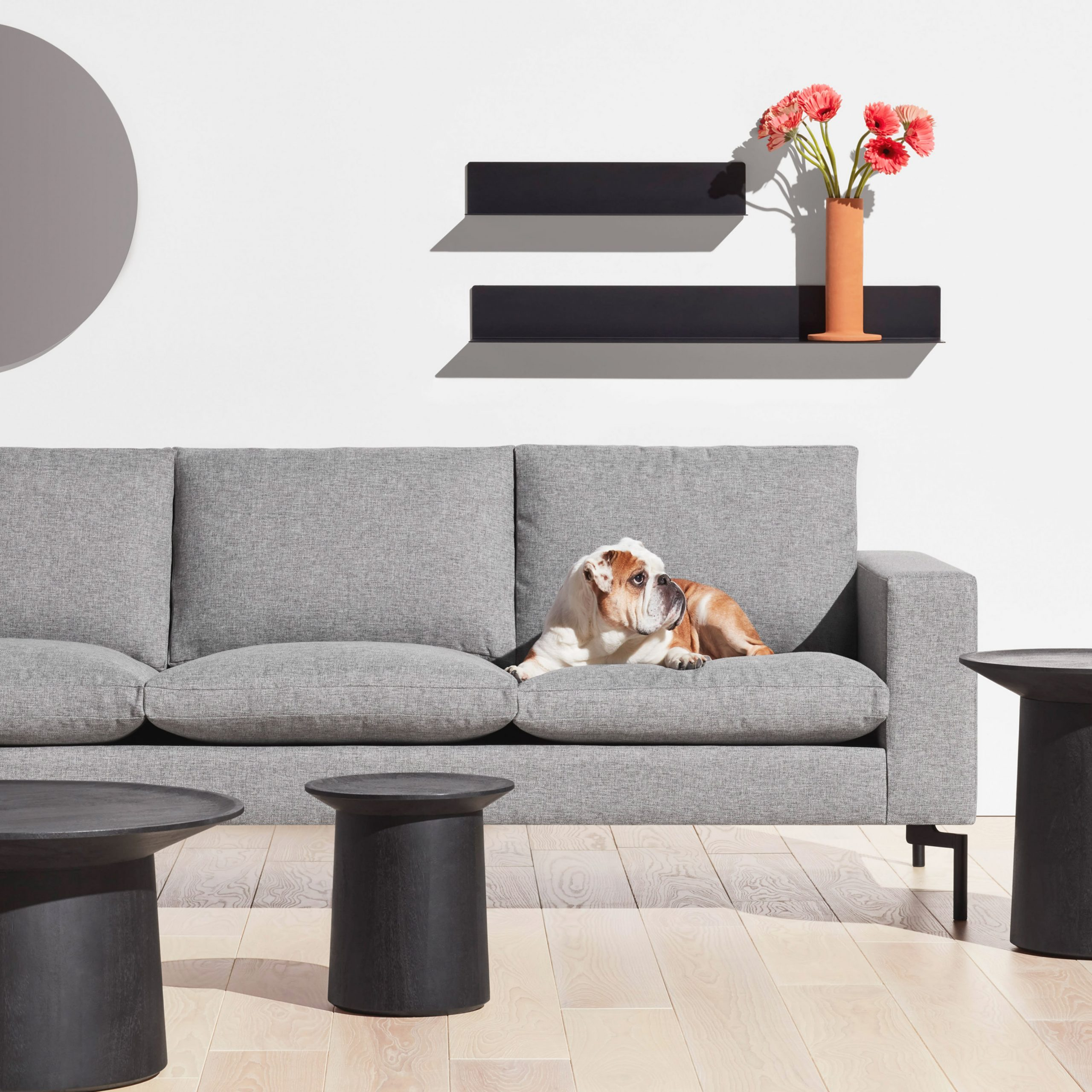 Modern And Contemporary Living Room Furniture - Modern Sofas within Modern Chairs For Living Room