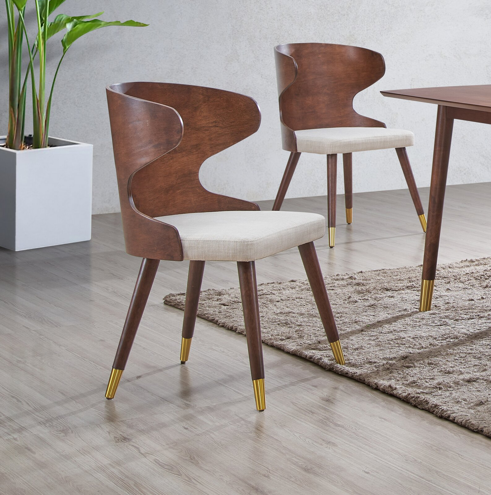 mid-century-modern-upholstered-seat-dining-chairs-molded-plywood-backrest-with-wingback-design-tapered-legs-gold-feet