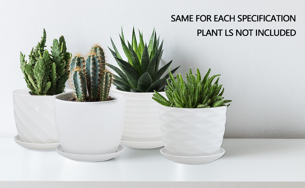 Mini Ceramic Plant Pots