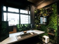 home-office-with-vertical-garden